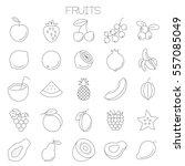 thin line flat fresh fruits an... | Shutterstock .eps vector #557085049