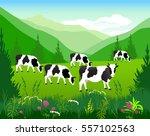 vector illustration. white cow... | Shutterstock .eps vector #557102563
