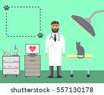 veterinarian with cat. | Shutterstock .eps vector #557130178