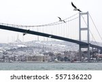 Bosphorus Bridge On Snowy Day ...
