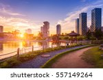 seoul city with beautiful... | Shutterstock . vector #557149264
