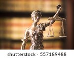 legal office of lawyers and... | Shutterstock . vector #557189488