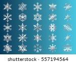 snowflake vector icon... | Shutterstock .eps vector #557194564