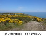 Hike Road On Howth Cliffs With...