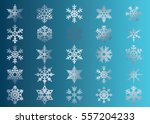 snowflake vector icon... | Shutterstock .eps vector #557204233