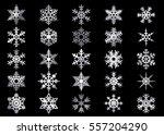 snowflake vector icon... | Shutterstock .eps vector #557204290