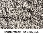 closeup of a pebbledashed wall | Shutterstock . vector #557209666