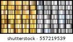 gold silver gradient background ... | Shutterstock .eps vector #557219539