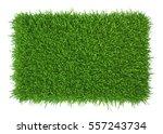 Green Grass. Natural Backgroun...