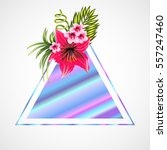 hologram triangle empty trendy... | Shutterstock .eps vector #557247460