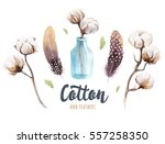 set of hand drawn watercolour ... | Shutterstock . vector #557258350