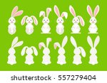 Stock vector cute ostern rabbit vector illustration easter cartoon bunny isolated on green background 557279404