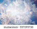 flower of life in the sky as... | Shutterstock . vector #557295730