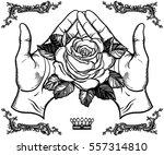 beautiful rose flower in female ... | Shutterstock .eps vector #557314810
