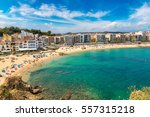 tourists enjoy at the beach in... | Shutterstock . vector #557315218