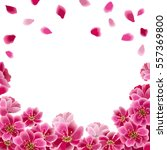 Stock vector sakura flowers and falling petals spring blooming background vector eps 557369800