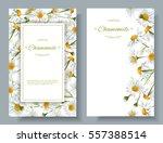 vector chamomile vertical... | Shutterstock .eps vector #557388514