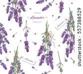 vector lavender flower seamless ... | Shutterstock .eps vector #557388529