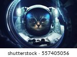 Stock photo cat at spacewalk cosmic art science fiction wallpaper beauty of deep space billions of galaxies 557405056