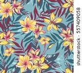 vector illustration tropical... | Shutterstock .eps vector #557409058