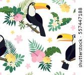 vector seamless tropical... | Shutterstock .eps vector #557447188