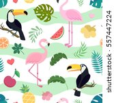 vector seamless tropical... | Shutterstock .eps vector #557447224