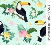 vector seamless tropical... | Shutterstock .eps vector #557447278