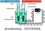 schematic diagram represents... | Shutterstock .eps vector #557455006