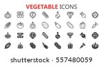 simple modern set of vegetable... | Shutterstock .eps vector #557480059