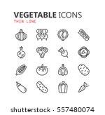 simple modern set of vegetable... | Shutterstock .eps vector #557480074
