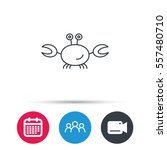crab icon. cancer shellfish... | Shutterstock .eps vector #557480710