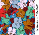 hawaiian tropical natural... | Shutterstock .eps vector #557492479