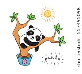 doodle panda bear  isolated... | Shutterstock .eps vector #557495098