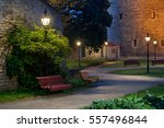 Colorful  Night Park In Tallin...
