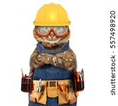 Stock photo funny cat is wearing a suit of builder craftsman on the white background 557498920