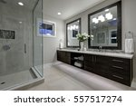 amazing gray master bathroom... | Shutterstock . vector #557517274