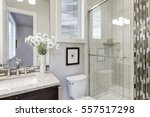 glass walk in shower with white ... | Shutterstock . vector #557517298