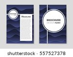 abstract vector layout... | Shutterstock .eps vector #557527378