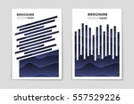 abstract vector layout... | Shutterstock .eps vector #557529226