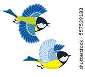 vector illustration of flying...   Shutterstock .eps vector #557539183