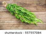 bunch of green scented rosemary ... | Shutterstock . vector #557557084