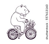 bear on the bicycle with basket ... | Shutterstock .eps vector #557613160