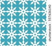vector seamless snowflakes or... | Shutterstock .eps vector #557636140