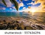 beautiful lanikai  kailua... | Shutterstock . vector #557636296