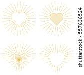 sunburst rays  radial and in... | Shutterstock .eps vector #557636524