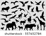 Set Of Animals Silhouettes...