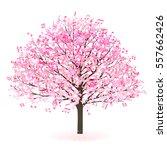 cherry spring flower icon | Shutterstock .eps vector #557662426