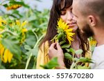 loving couple in a field of... | Shutterstock . vector #557670280