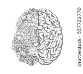 brain cyborg sketch. human... | Shutterstock .eps vector #557723770