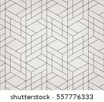 seamless linear pattern with... | Shutterstock .eps vector #557776333